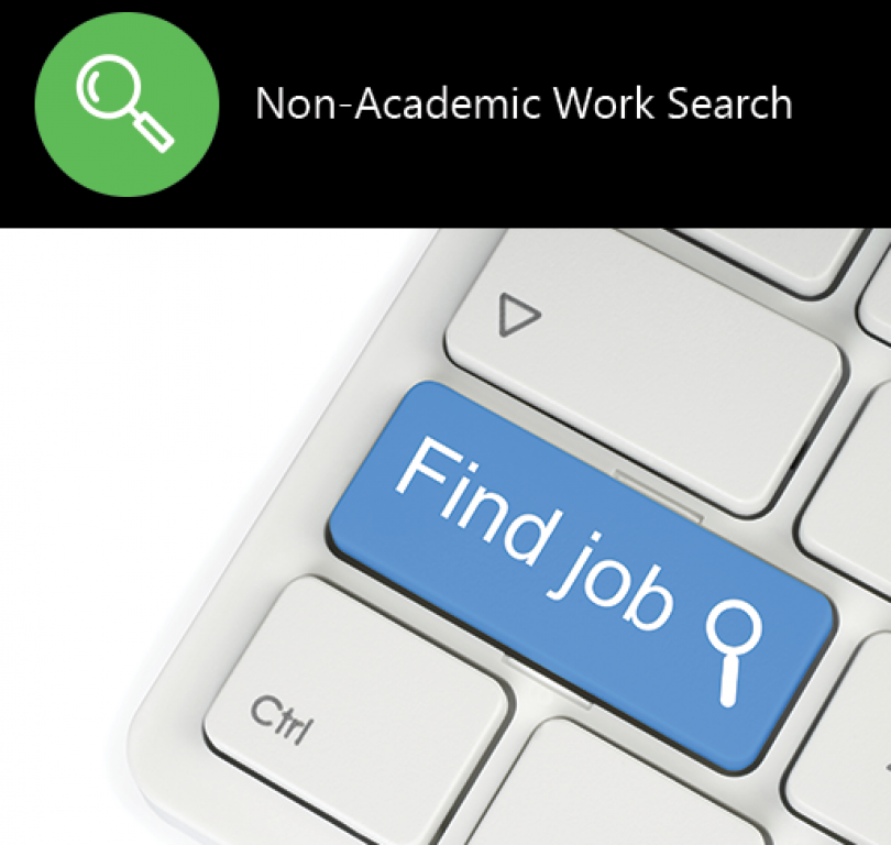 Non-Academic Work Search
